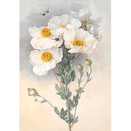 """Основа с рисунком  для вышивания лентами OVB-0118 """"Белые цветы"""""""