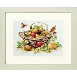 """""""Summerfruit"""""""
