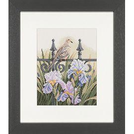 """Backyard beauties - dove"""