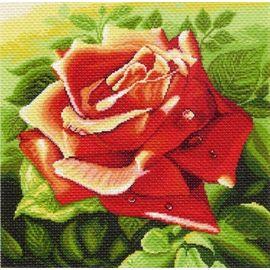 "Канва с рисунком Матренин посад 1216 ""Красная роза"""